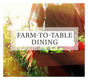 Visit our dining page for more information about our fresh farm-to-table meals served at Mill Hill Residence