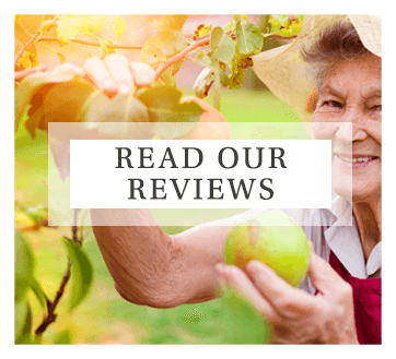 Visit our reviews page for resident and family reviews of Mill Hill Residence