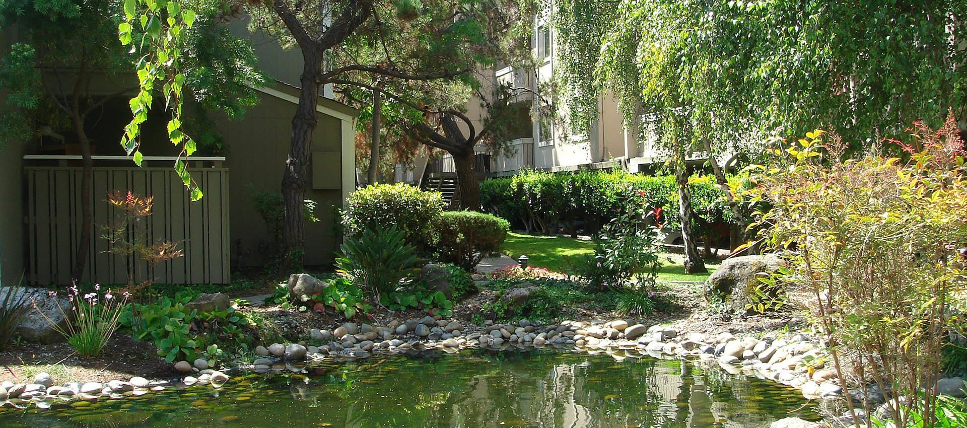 Beautiful pond at apartments in Alameda, CA