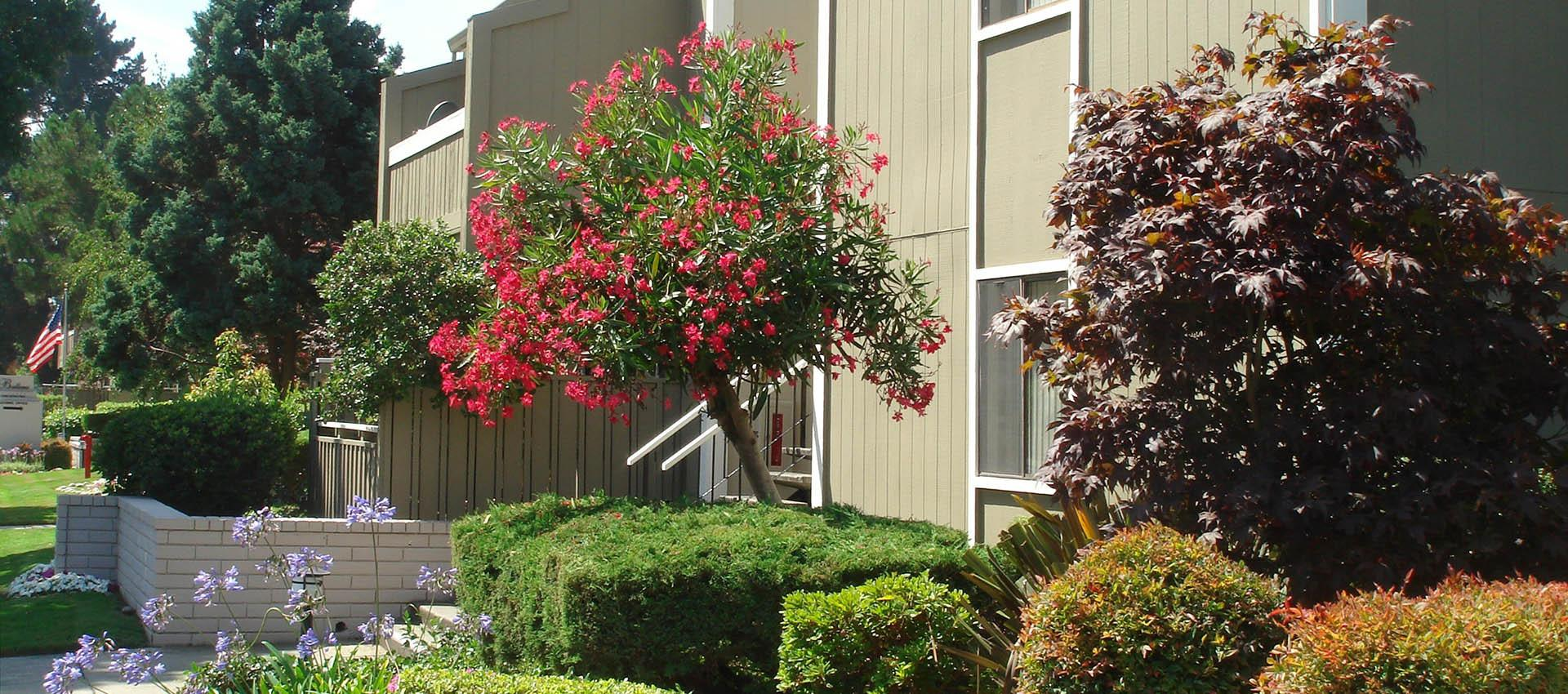 Exterior at Ballena Village Apartment Homes in Alameda, CA