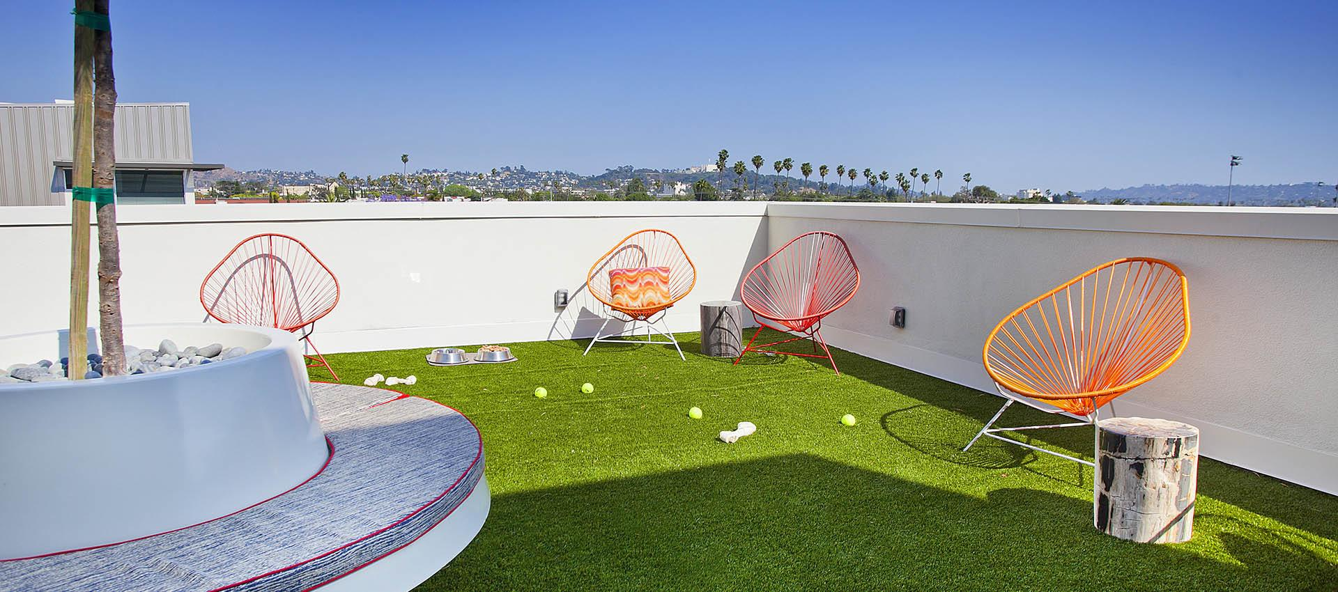 Rooftop dog park at Brio Apartment Homes