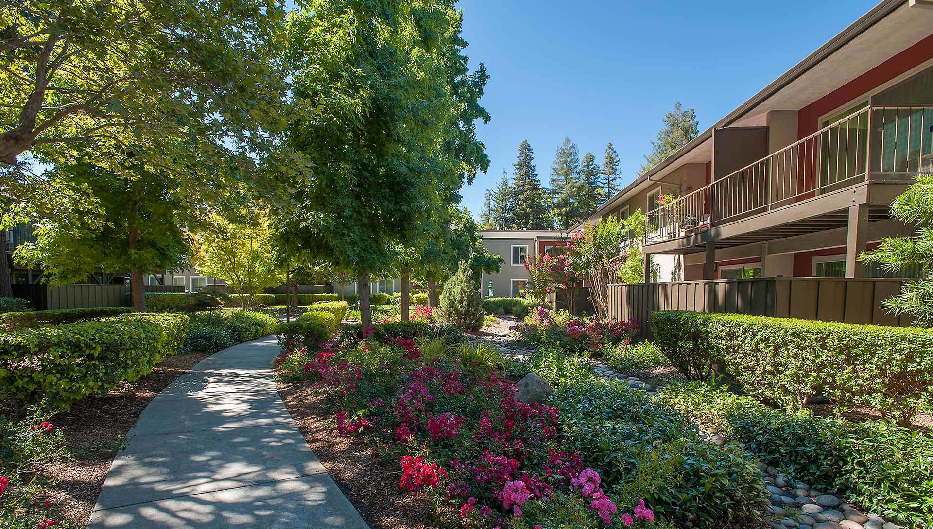 Apartments in Walnut Creek, CA
