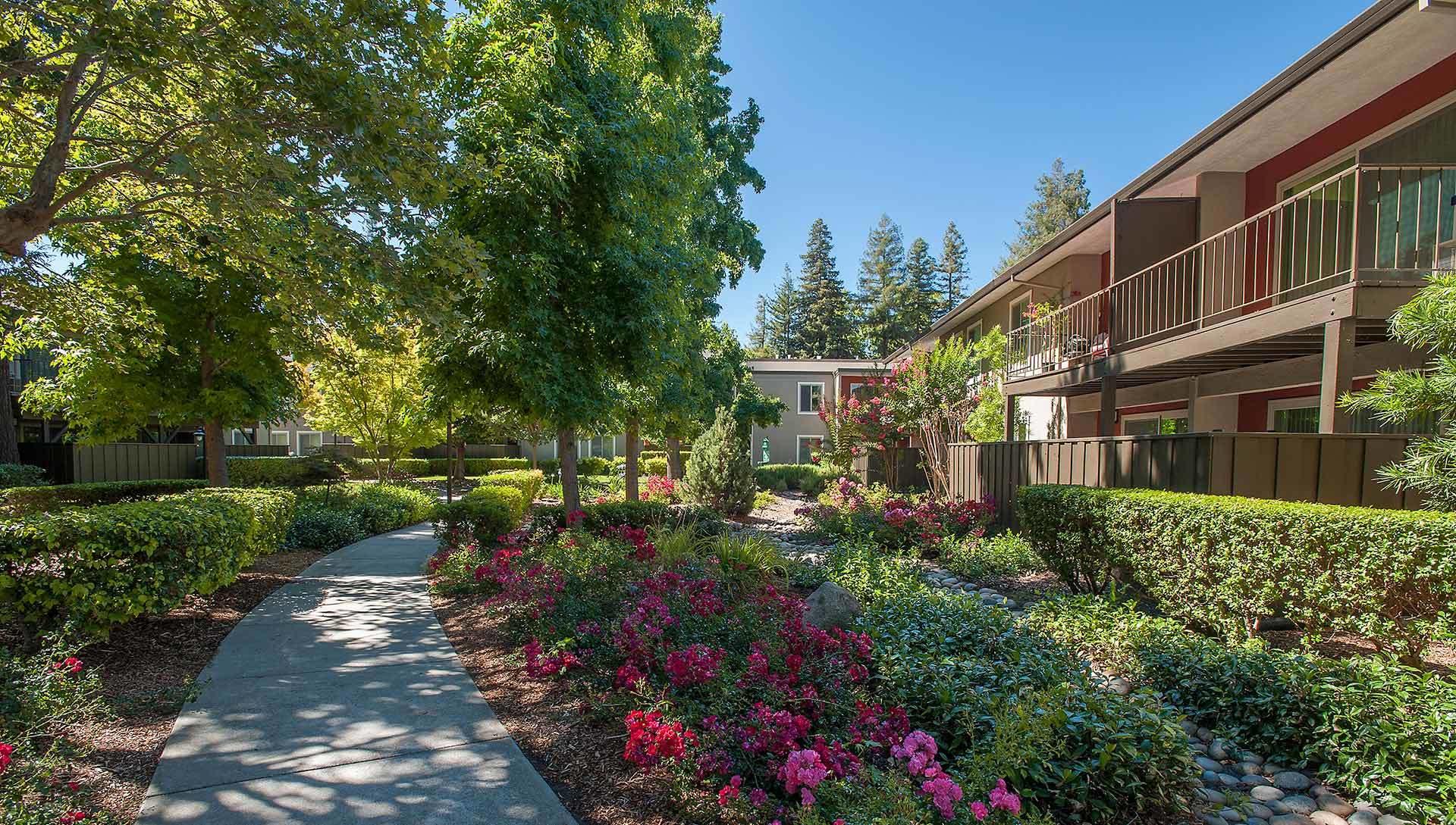 Apartments in Walnut Creek, CA