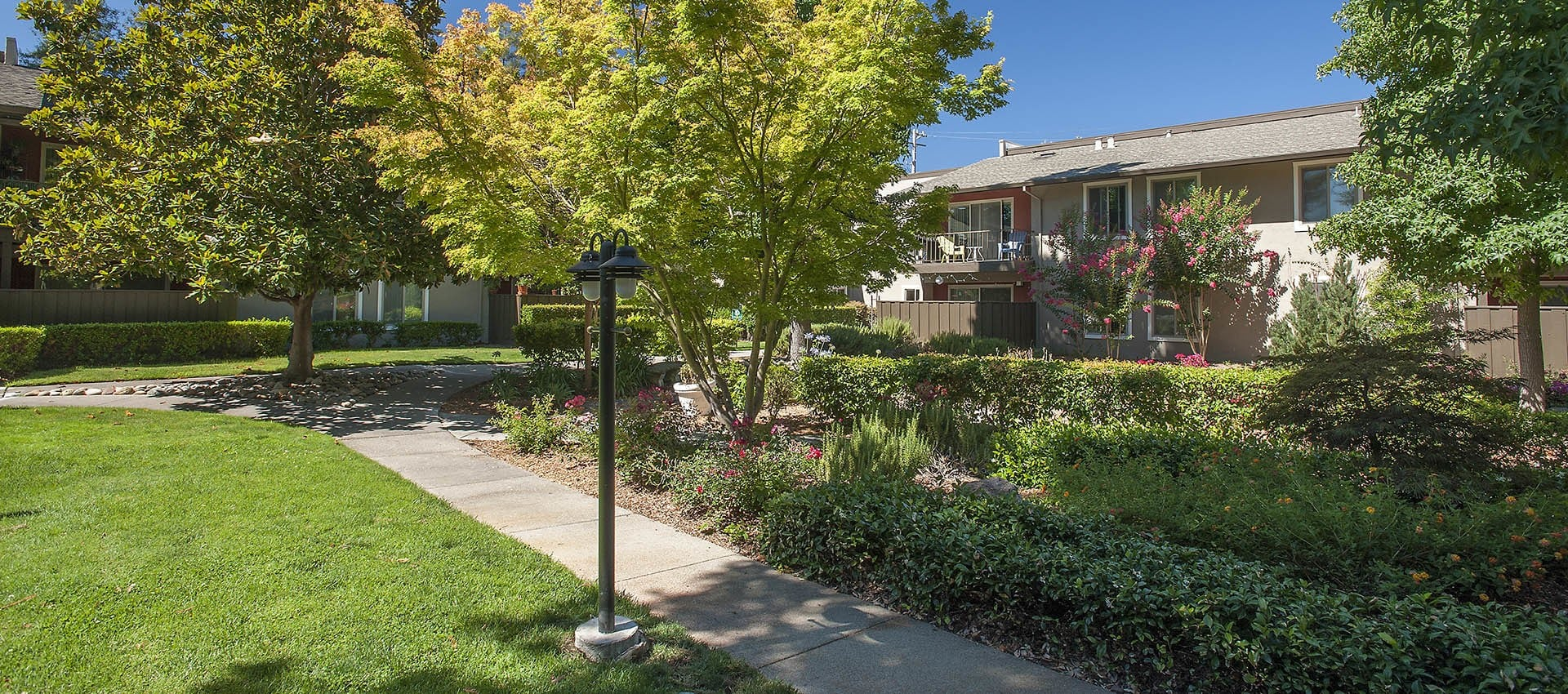 Landscaped And Lighted Path at Flora Condominium Rentals in Walnut Creek, California
