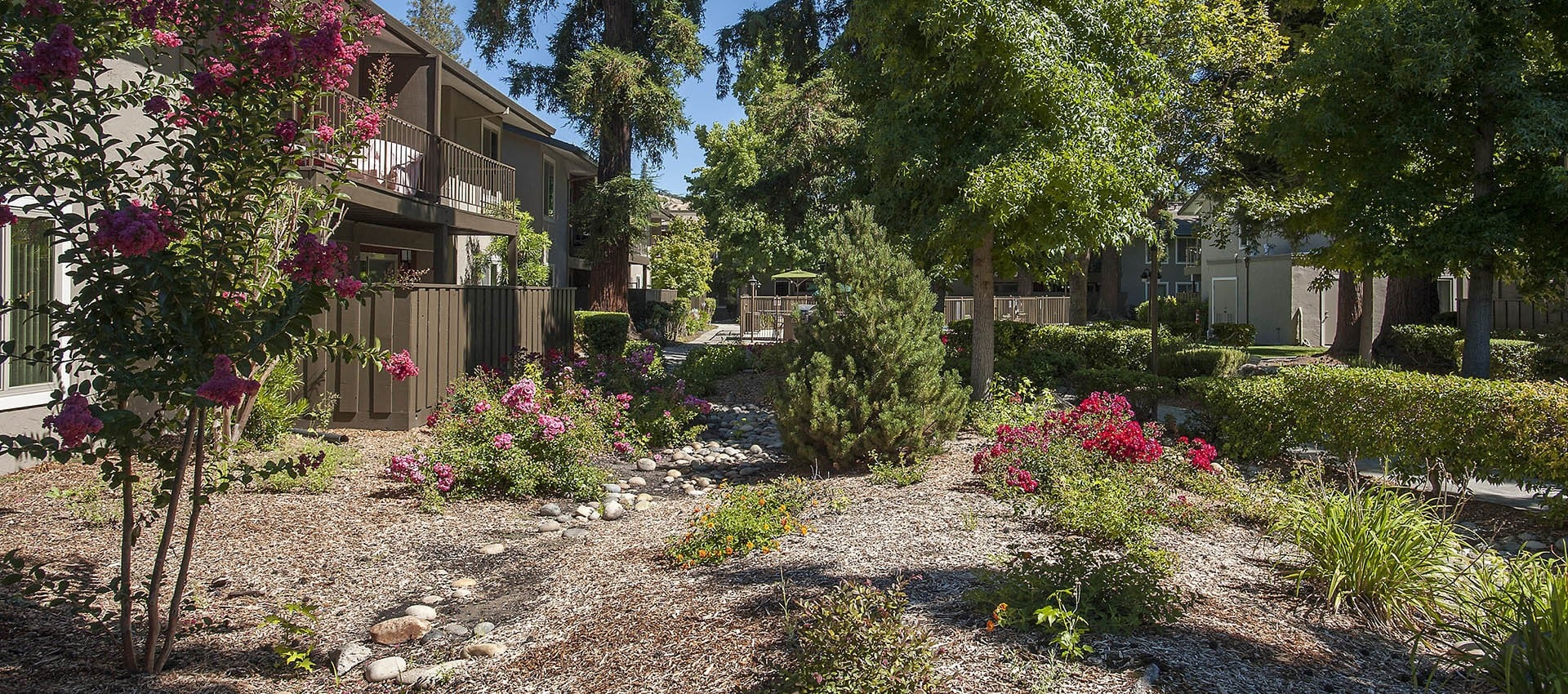 Landscaping Near Private Patio at Flora Condominium Rentals in Walnut Creek, California