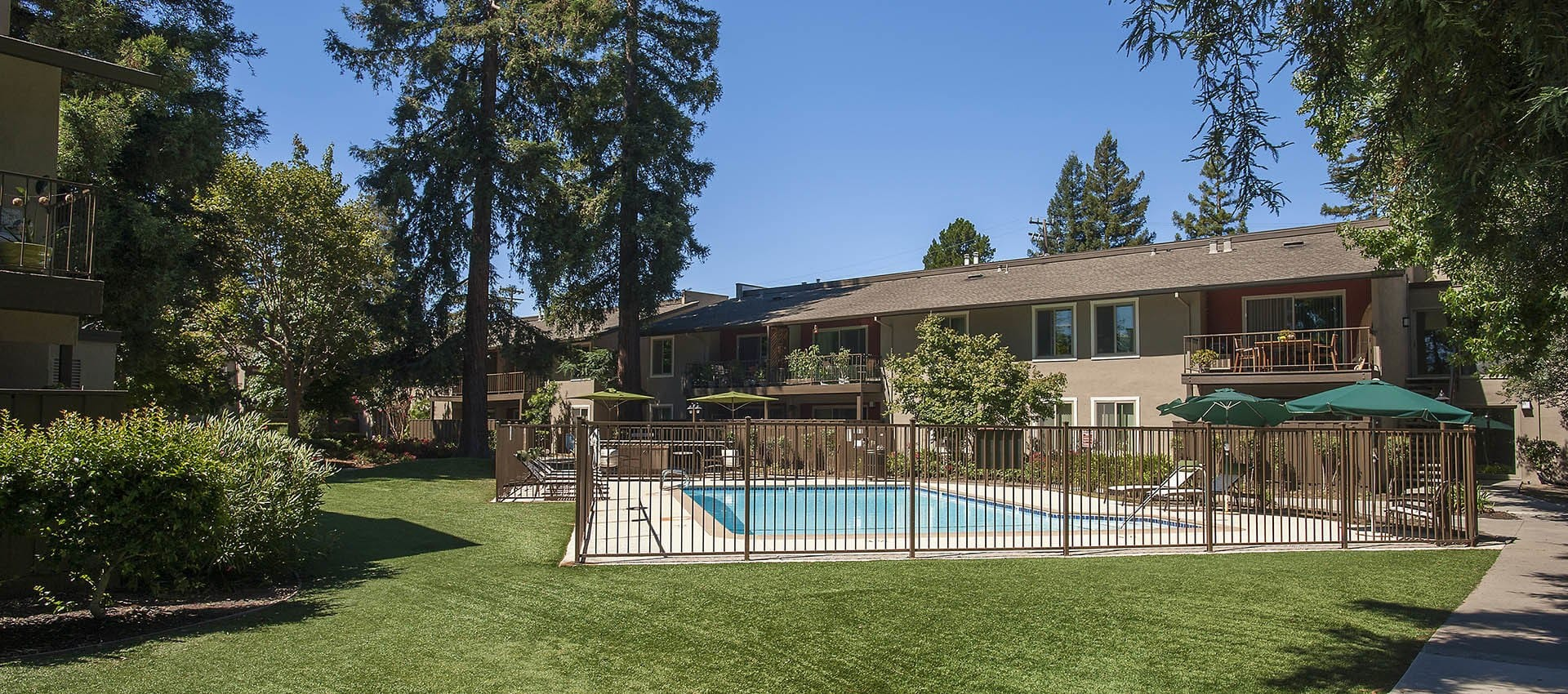Swimming Pool Surrounded By Grass at Flora Condominium Rentals in Walnut Creek, California