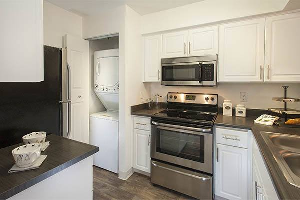 Standard features at Mill Springs Park Apartment Homes in Livermore