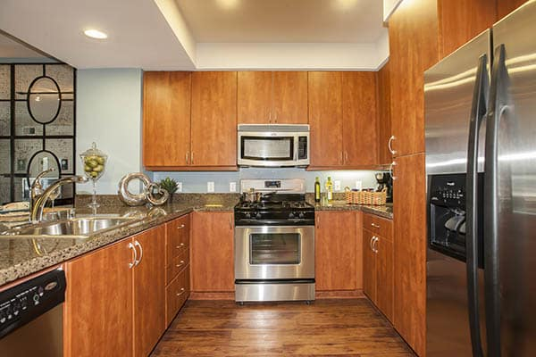Luxury features at Azure Apartment Homes in Petaluma