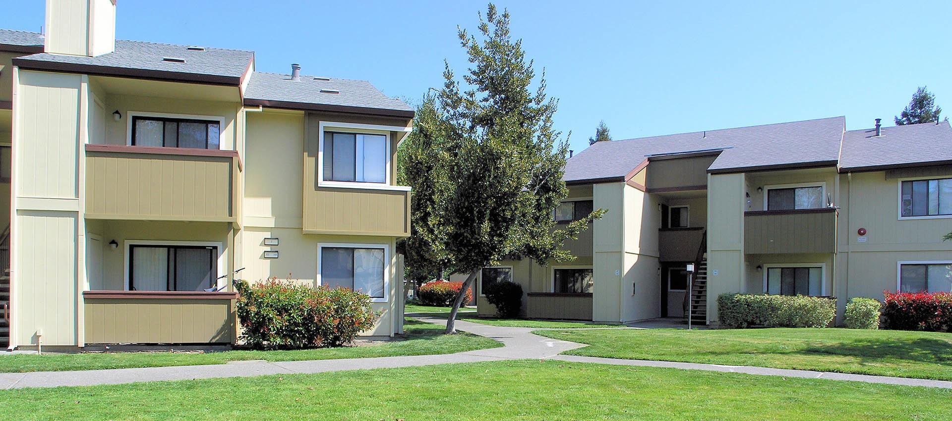 The grounds at apartments in Rohnert Park, CA
