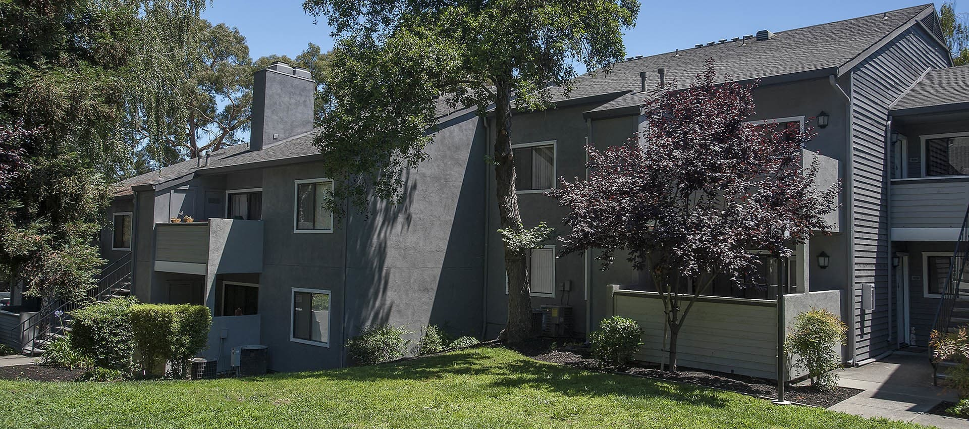 Landscaping With Mature Trees at Plum Tree Apartment Homes in Martinez, California