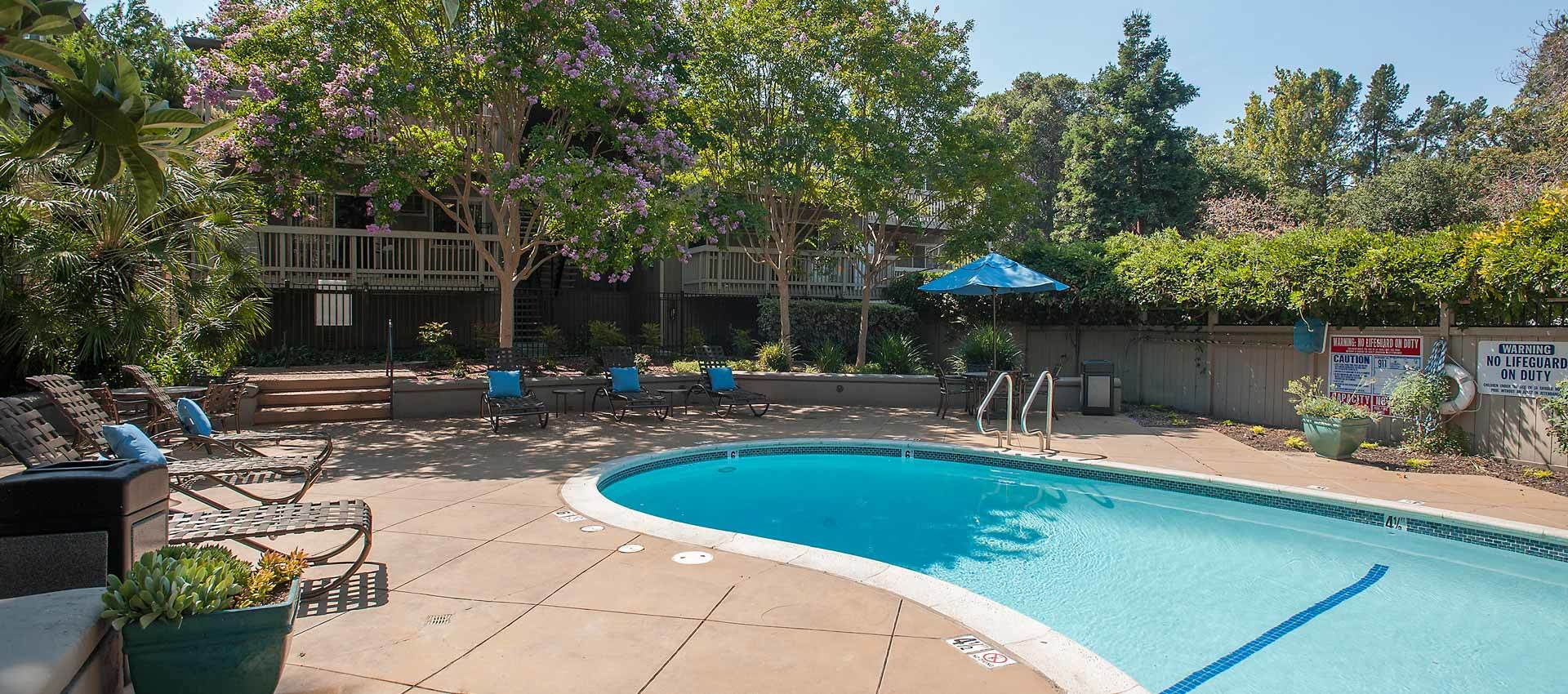 Pool at Regency Plaza Apartment Homes in Martinez, CA