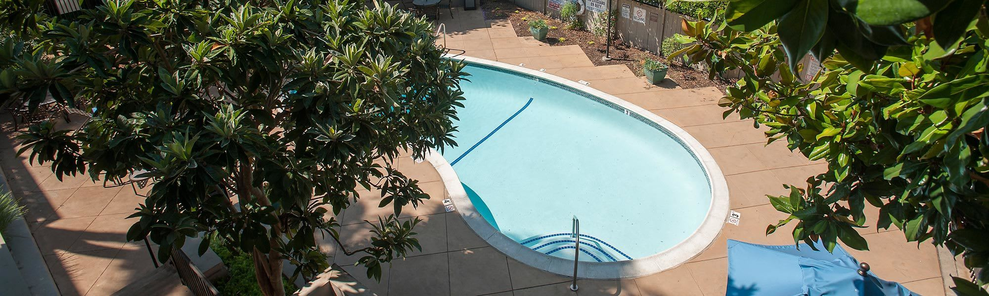 See what we have to offer by visiting Regency Plaza Apartment Homes's amenities page.