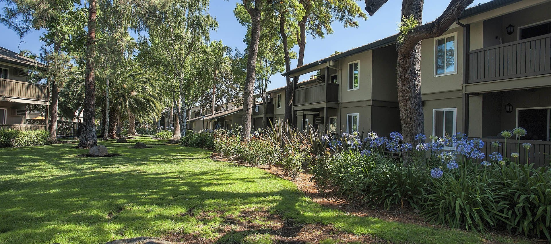 Lawn at Villa Palms Apartment Homes in Livermore, California