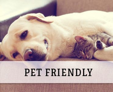 pet friendly apartments in St. Francis