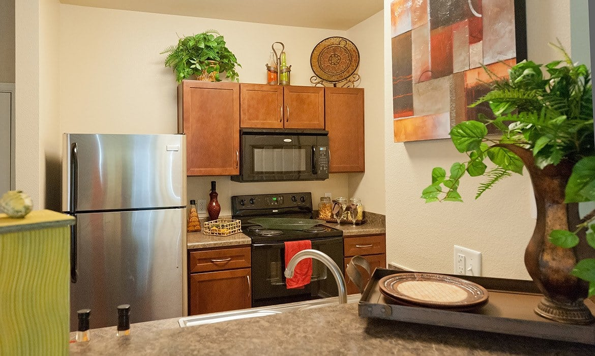You'll love cooking in your new, modern kitchen at Arioso Apartments in Grand Prairie, TX.