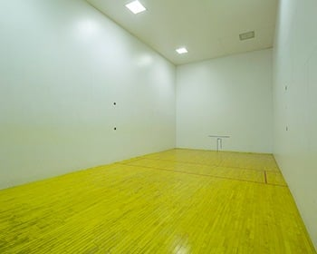 We've got a racquetball court and more here at Fairlane Meadow Apartments in Dearborn.