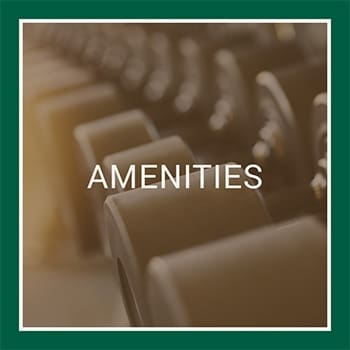 Visit our amenities page to learn more about the luxury features available at Fairlane Meadow Apartments