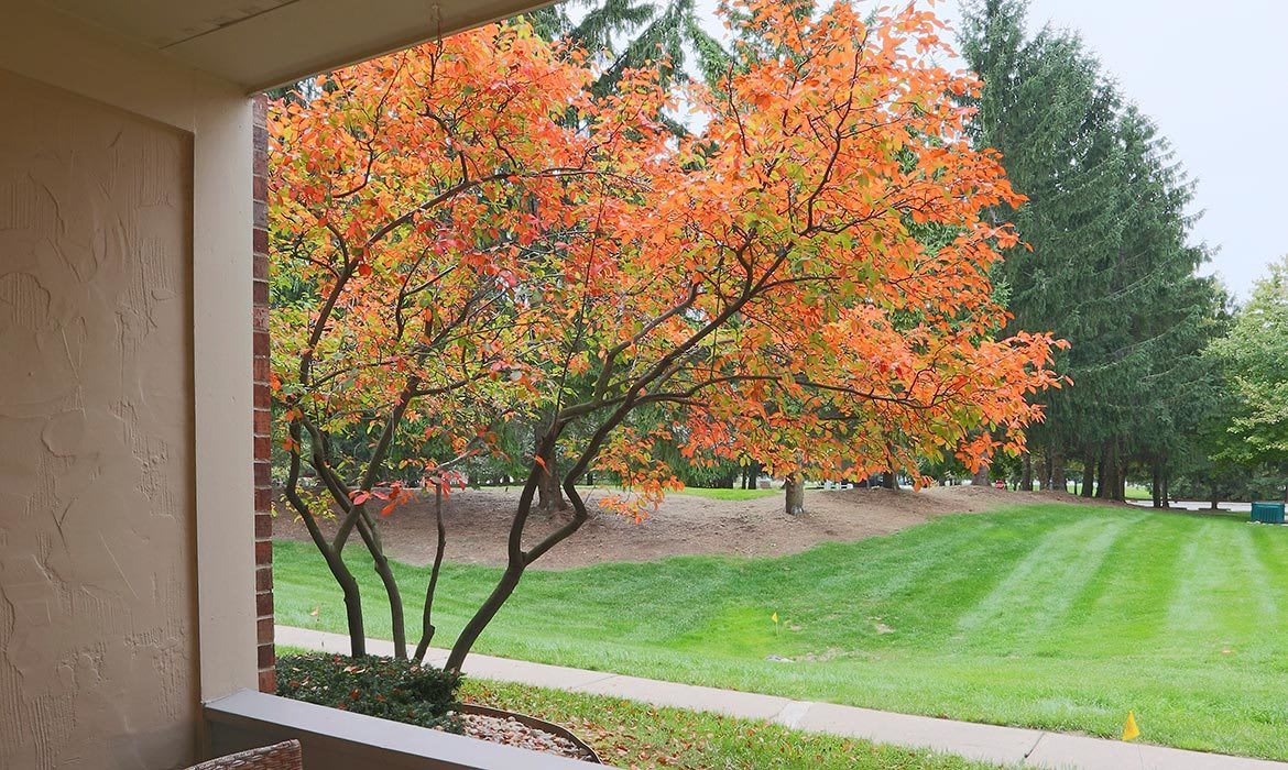 When the leaves are changing in the fall, you'll have a wonderful view from your private patio or balcony at Fairlane Meadow Apartments in Dearborn, MI.