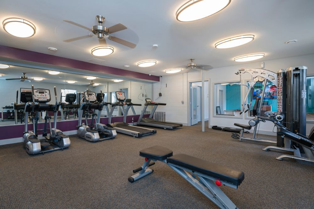 Gym at The Pines of Cloverlane Apartments