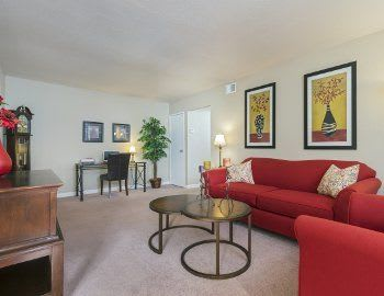 The Pines of Cloverlane Apartments has luxurious amenities that are sure to please everyone.