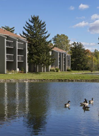 Great schools, wonderful employers, excellent entertainment, and more await residents of The Pines of Cloverlane Apartments in Ypsilanti!