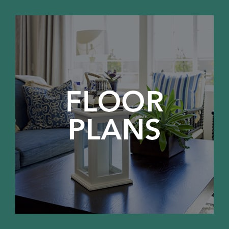 Visit our floor plans page to view our floor plan options at Plumtree Apartments