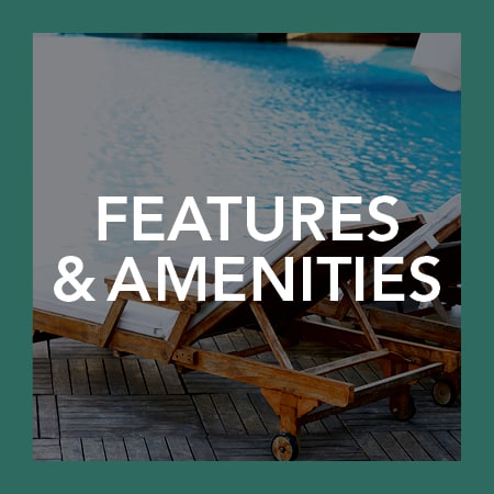 Visit our amenities page to learn more about the luxury features available at Plumtree Apartments