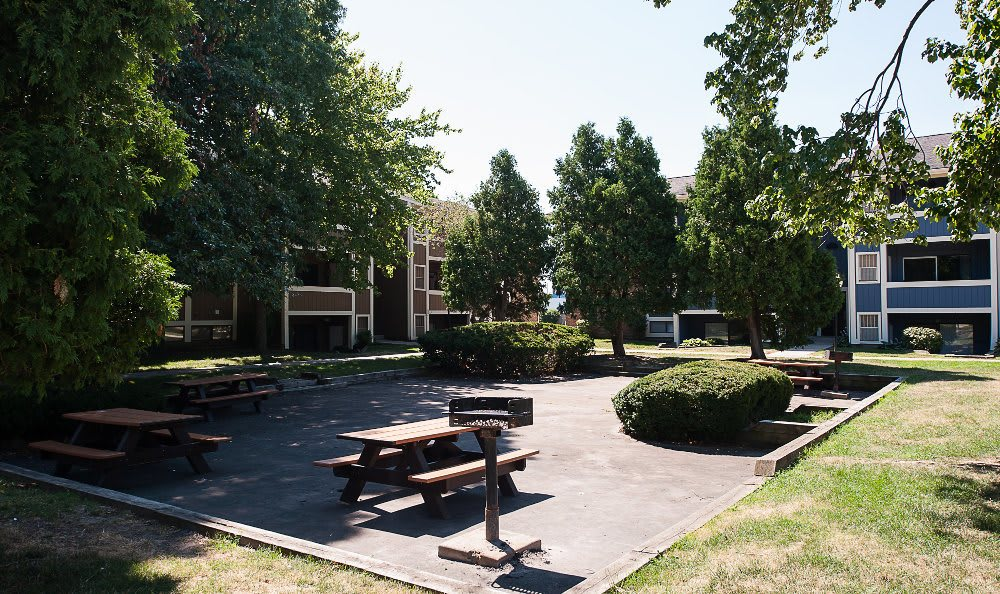 Picnic area at  The Woodlands Apartments in Toledo, OH