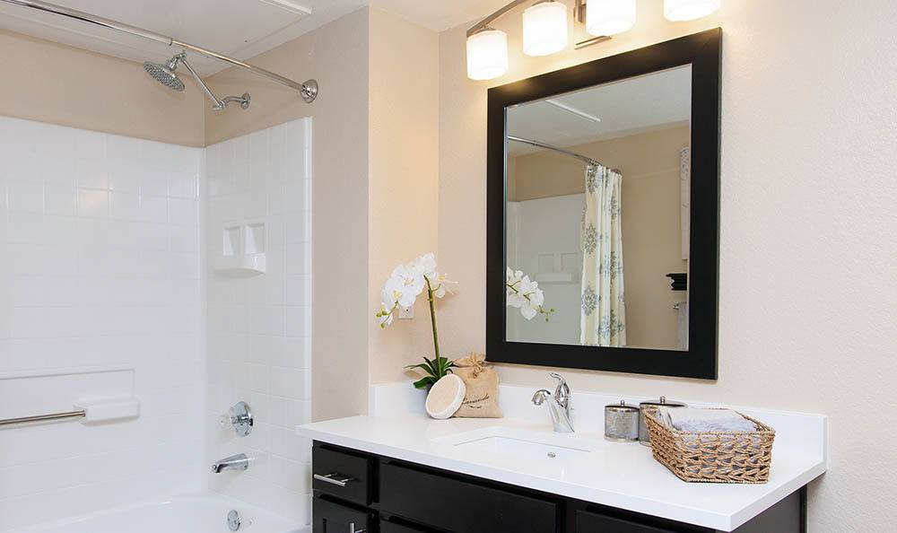 Bathroom at Shadow Creek Apartment Homes