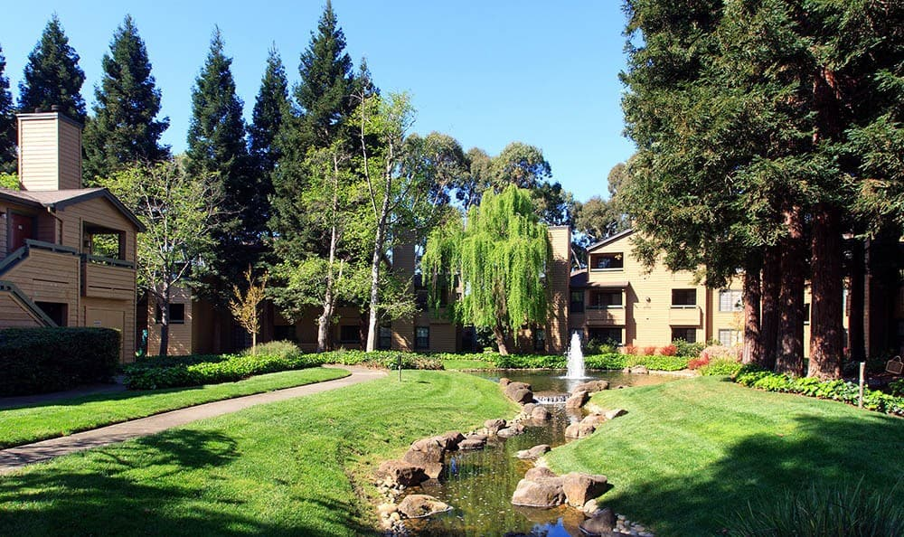 Poolside at Shadow Creek Apartment Homes