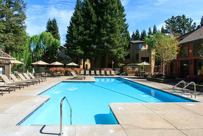 Pool at Shadow Creek Apartment Homes in Santa Rosa