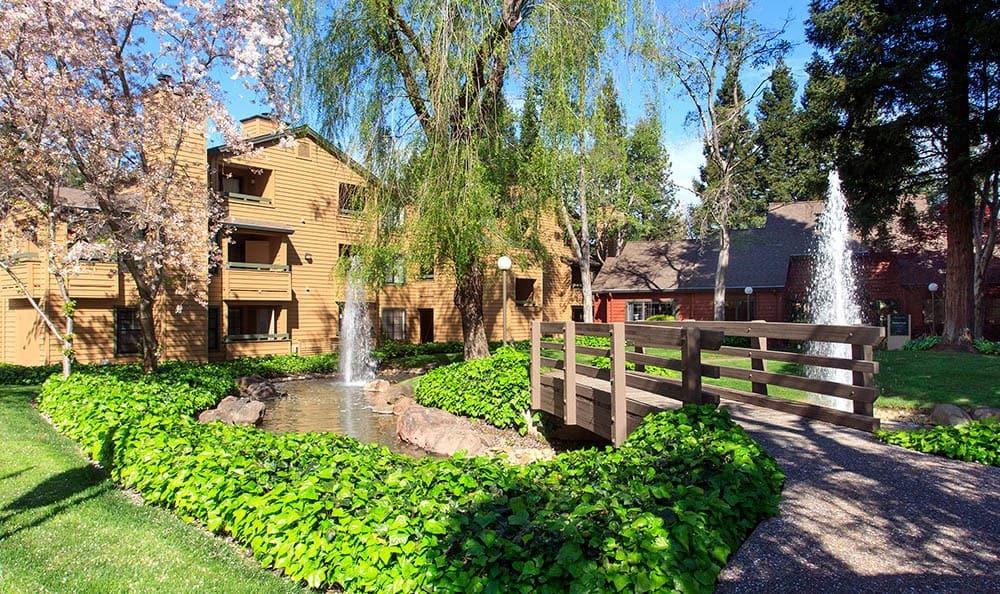 Pond at Shadow Creek Apartment Homes
