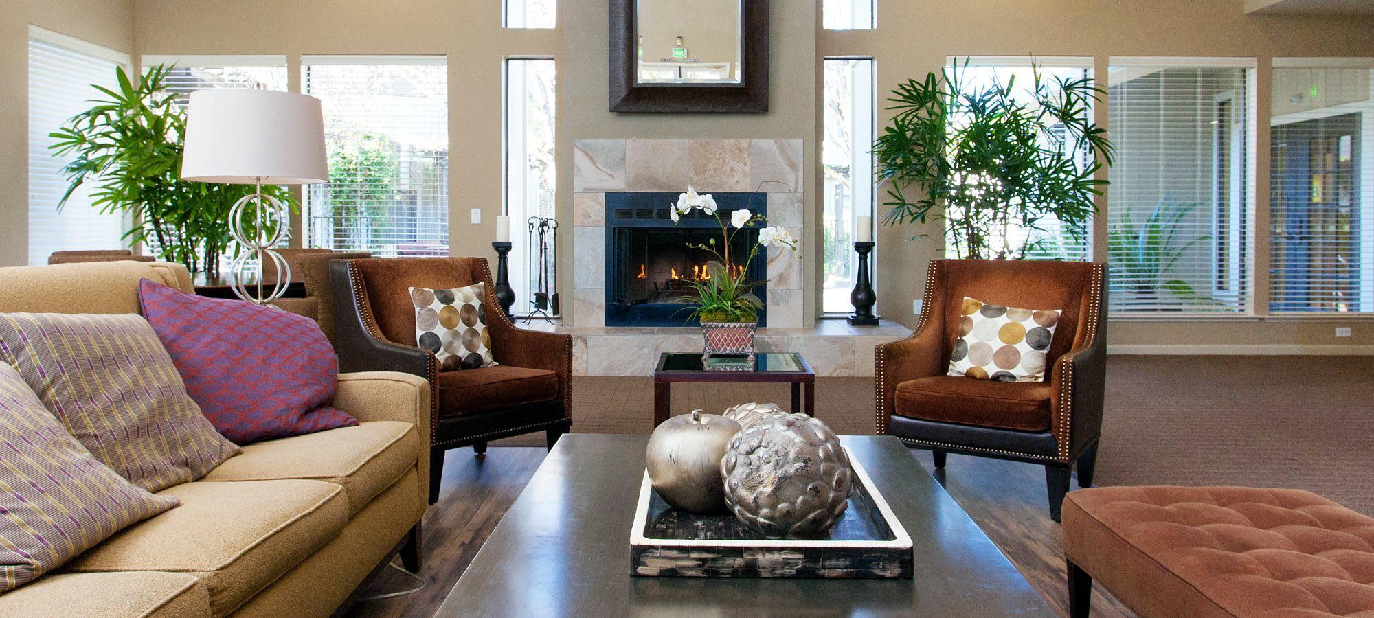 Delicieux Apartments In Santa Rosa, CA