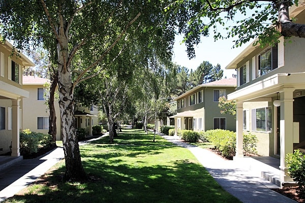 You'll find gorgeous apartments at Birchwood
