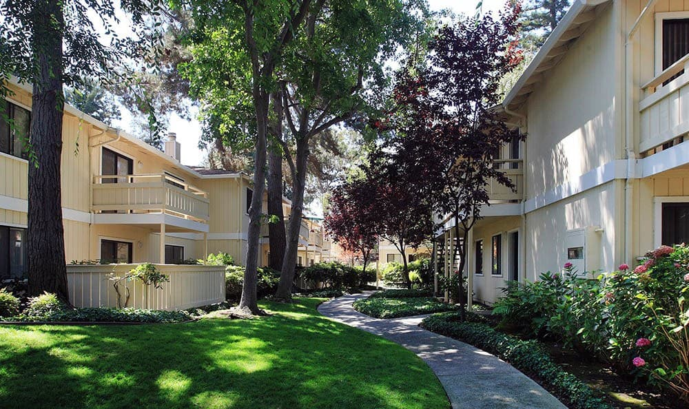 Large Trees At Central Park Apartments In Sunnyvale