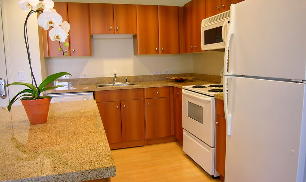 You'll love cooking in your new luxurious kitchen at 1010 Pacific Apartments