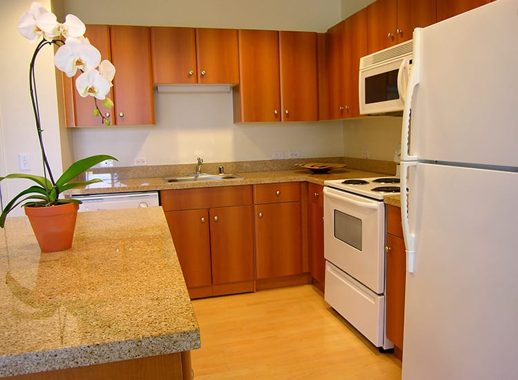 1010 Pacific Apartments offers stylishly appointed kitchens