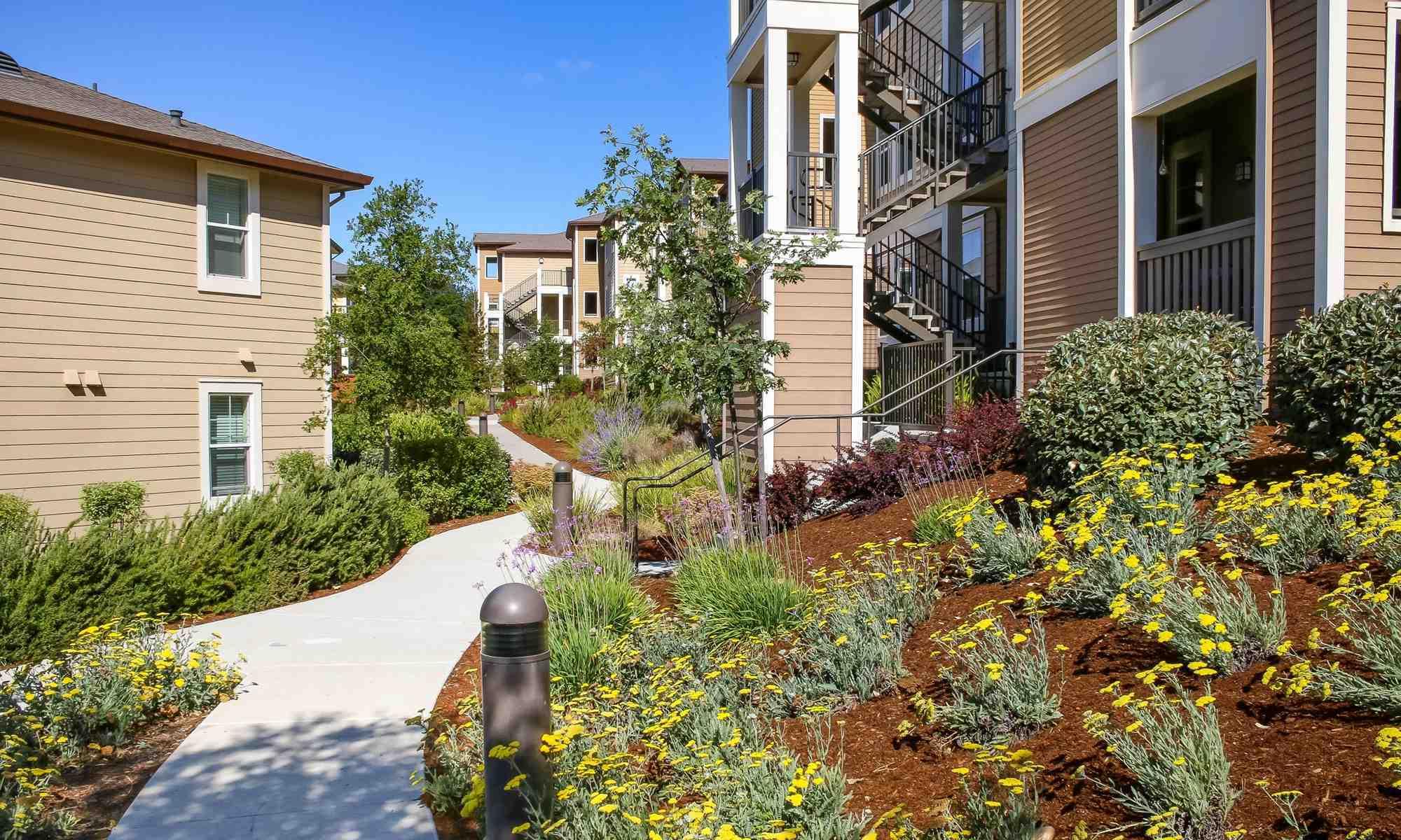 Well Landscaped Yards at the Santa Rosa Apartments