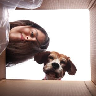 Choose Q-2 Self Storage for all your storage needs!