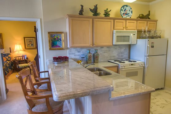 Apartment Kitchenette at Mansion at Waterford Assisted Living