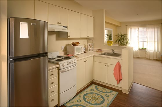 Maple Leaf Assisted Living & Memory Care Apartment Kitchen