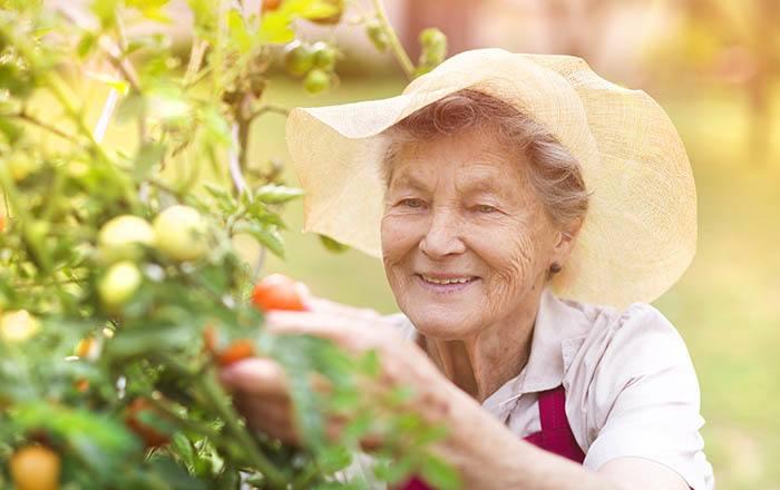 Enriched assisted senior living in Roanoke