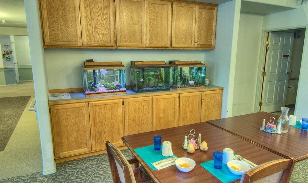 Fish Tanks at Dorian Place Assisted Living in Ontario