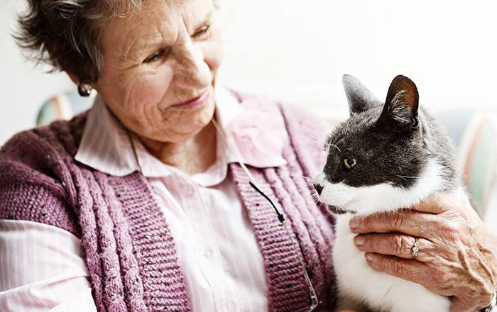 Woman and her cat enjoying Highland Estates assisted living