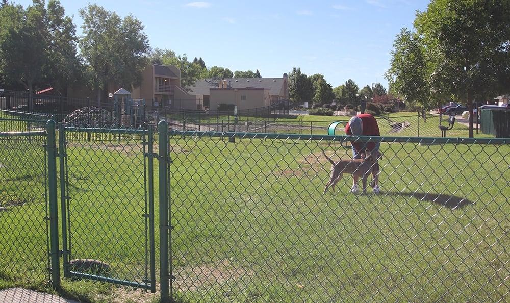 Dog Park at Alvista on Baltimore