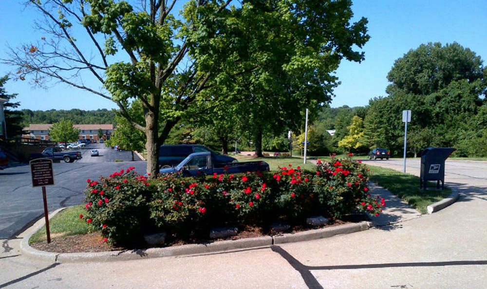 Nicely Landscaped at front yard Fox Hill Apartments