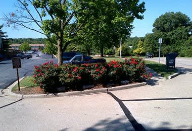 Front yard at Fox Hill Apartments in St. Charles