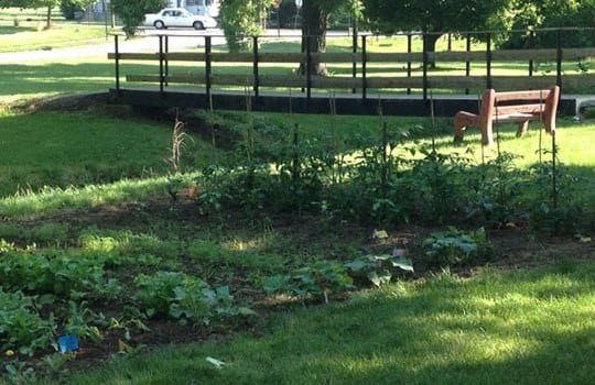 Garden at Harding House