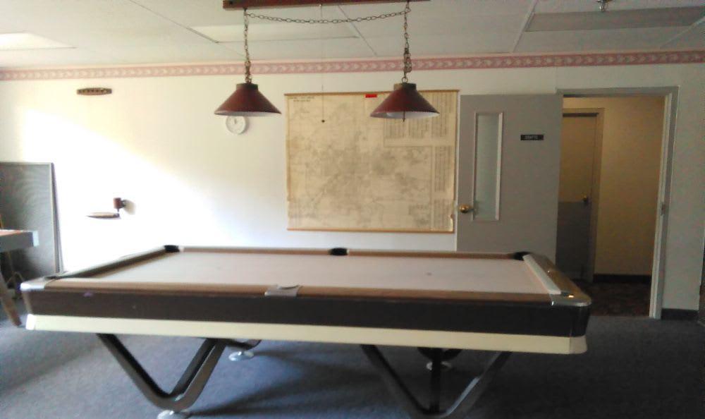 Pool table at Tamarack in MI , Holt