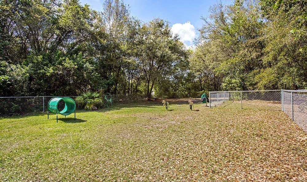 Dog Park At Sabal Palm at Carrollwood